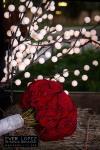 wedding destination photographer mexico ever lopez