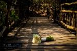 fotos boda playa hotel boca de iguanas tenacatita jalisco los angeles locos blue bay isla navidad boda