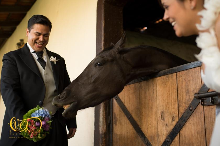 caballos terraza jardin boda hacienda la siembra guadalajara wedding photographer fotografo ever lopez mexico