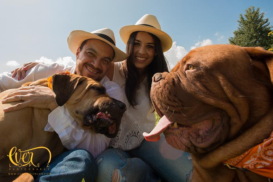 Sesion de fotos familiar con perros en elbosque