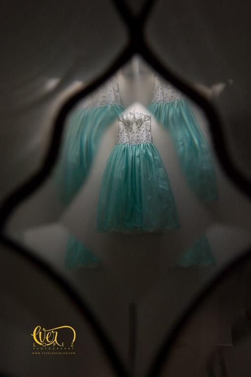 vestido de quince fotografo de quinceañeras arandas jalisco mexico fotos xv 15 quince años