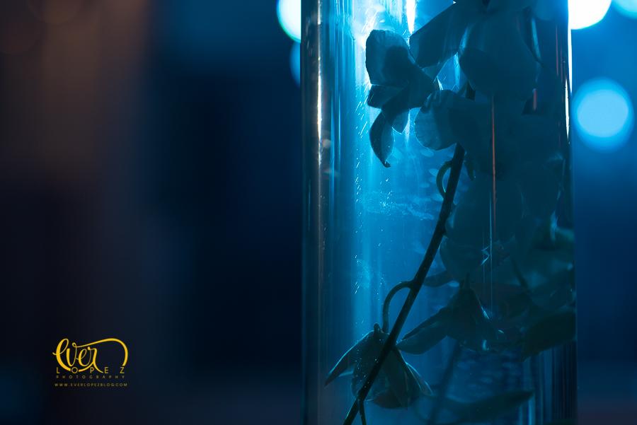Ivane flores, arreglos florales para boda, ramos de novia, flores, naturales, Guadalajara, Jalisco, Mexico, bodas, fotos, ideas