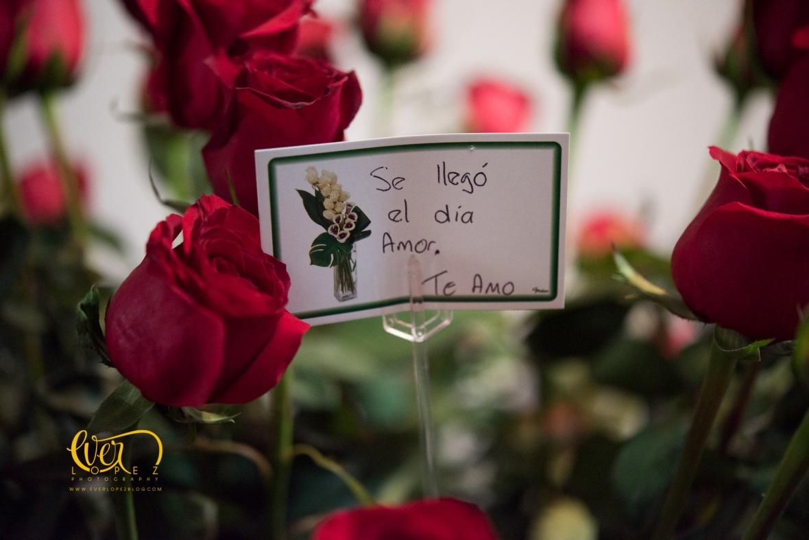 fotografo de bodas ameca jalisco mexico