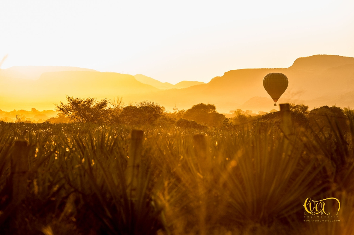 Entrega de anillo de compromiso durante vuelo en globo aerostatico.  Guadalajara, Jalisco, Mexico. fotos