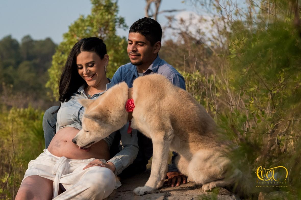 Fotografos de mascotas Mexico