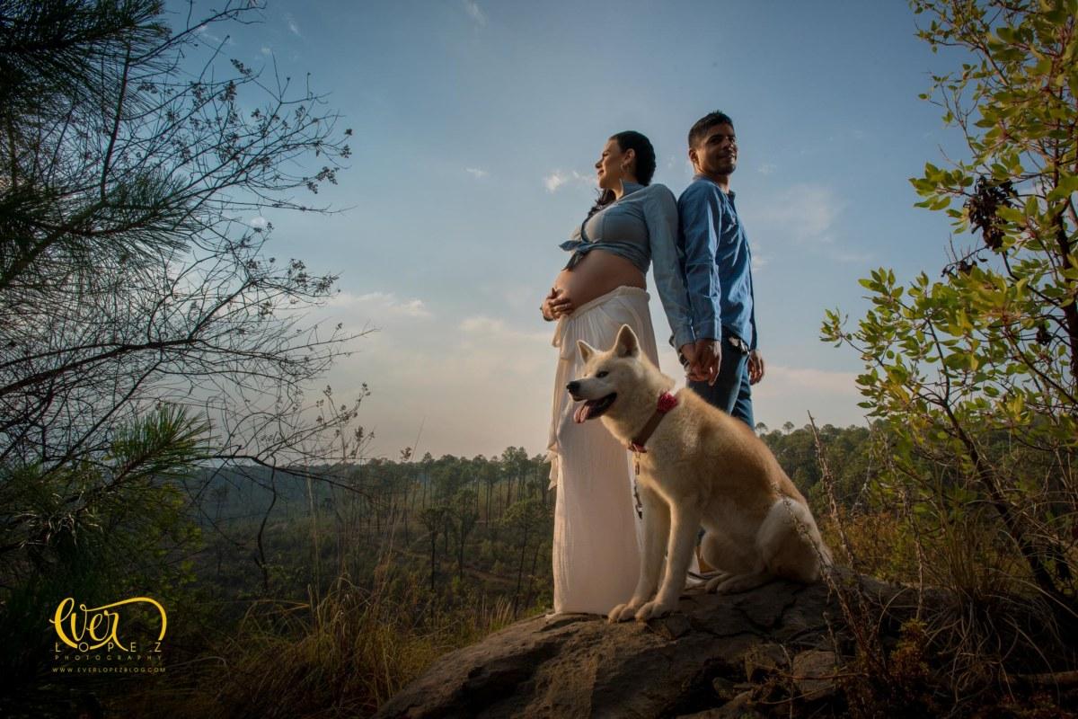 Sesion con mascotas, fotos de embarazo con perros enMexico