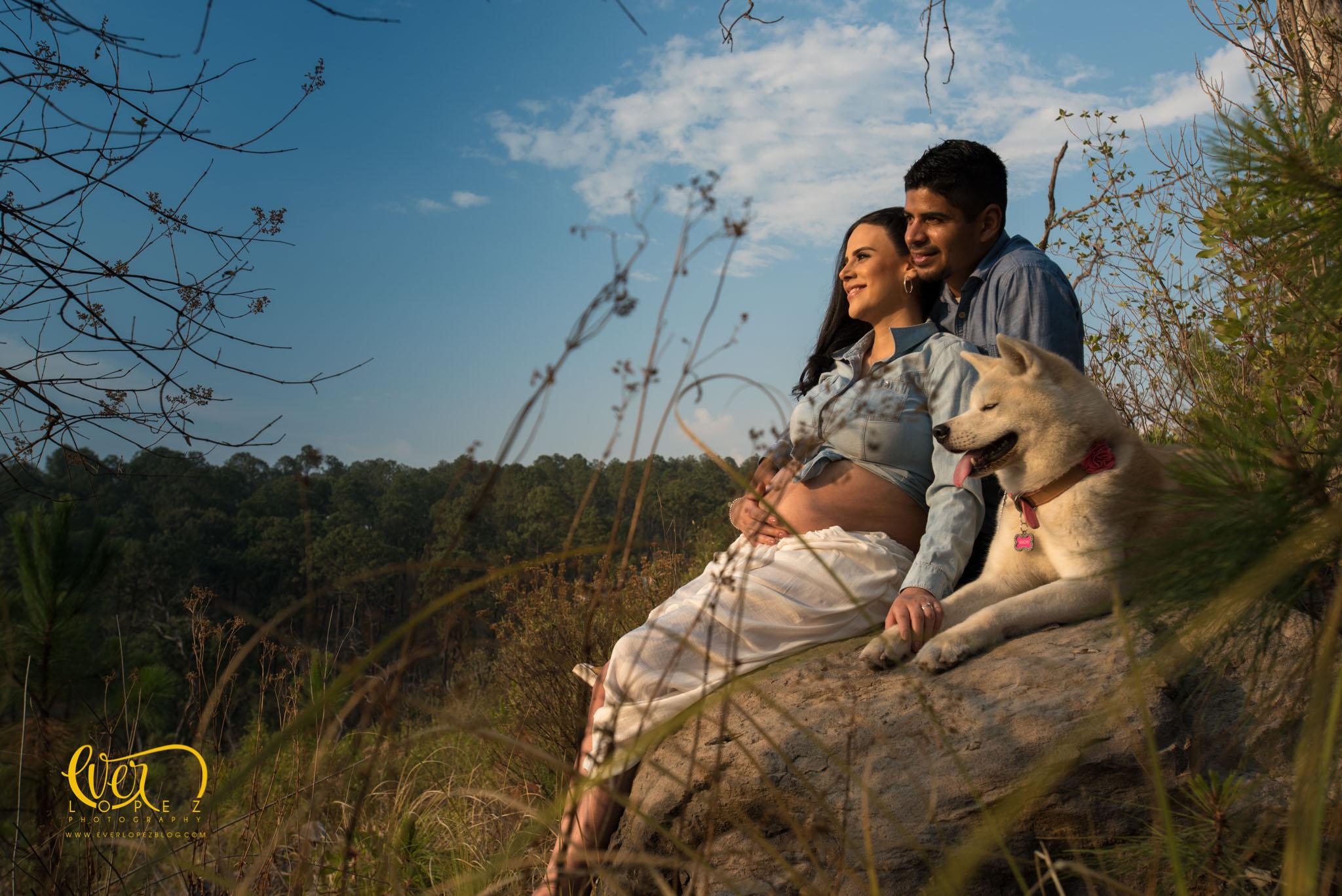 las fotos mas tiernas de mujeres embarazadas con sus perros en Guadalajara