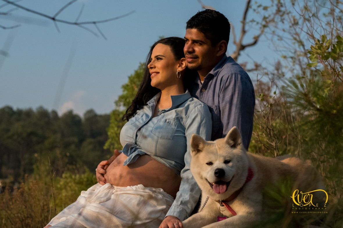 Mujeres embarazadas y perros Guadalajara