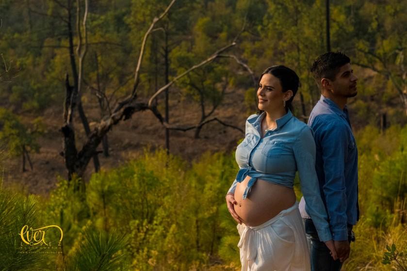 sesion de fotos de embarazo con tu mascota